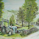 Tractor at Watendlath by Sheila Fielder