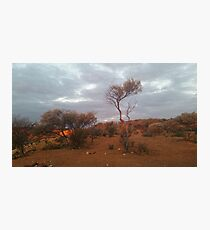 Outback.. Photographic Print