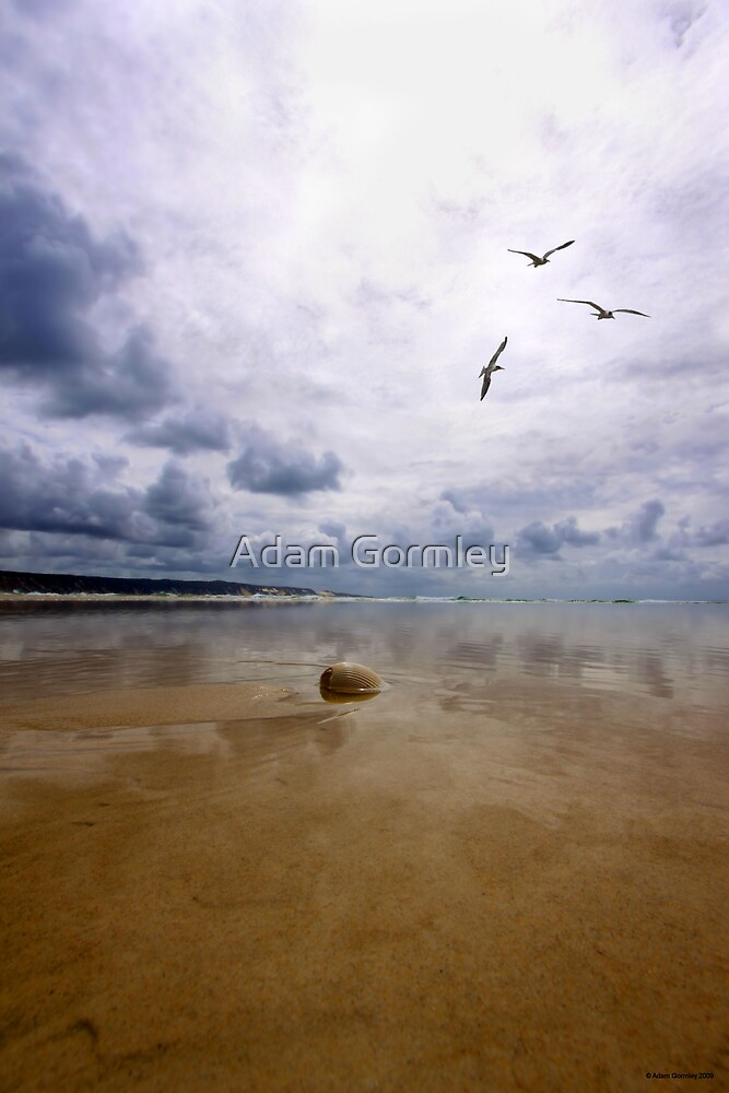 Calm Before the Storm by Adam Gormley