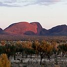 Kata Tjuta and the Moment Pano by Steven Pearce