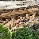 Cliff Palace Overlook.....(Mesa Verde National Park) by Laura Puglia