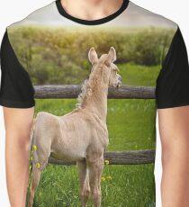 Palomino Foal 1 Graphic T-Shirt