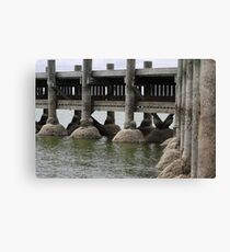 low water Canvas Print
