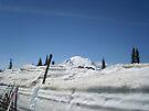 Ski Rainier by Tori Snow