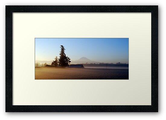 Misty Autumn Morning  by Tori Snow