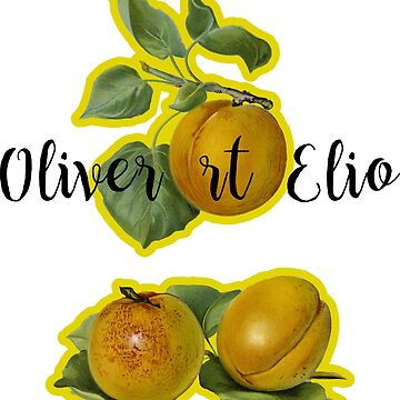 Oliver et Elio by Magbees