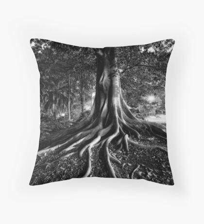 Early Evening In The Garden Of Good And Evil Throw Pillow