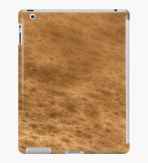 Canals iPad Case/Skin