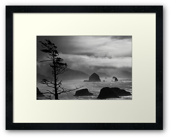 A Stormy Day at Cannon Beach - black & white by Mary Ann  Melton