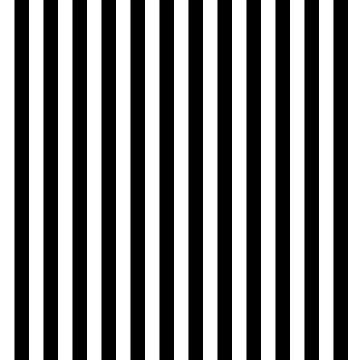 Black & White by loredana53