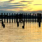 Titlow Beach at Sunset by Shannon Beauford