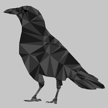 Geometric Crow by TheLivingEthan