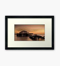 Starlings above West Pier Framed Print