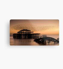 Starlings above West Pier Metal Print