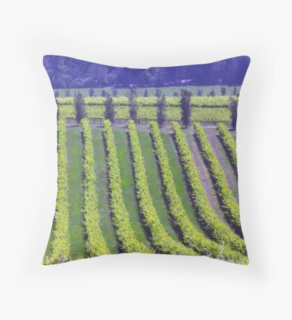 Vineyards seen from d'Arenberg Winery, McLaren Vales, South Australia Throw Pillow