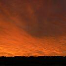 Firey Sky by Karina Walther