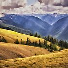 Hurricane Ridge - Olympic National Park by Kathy Weaver