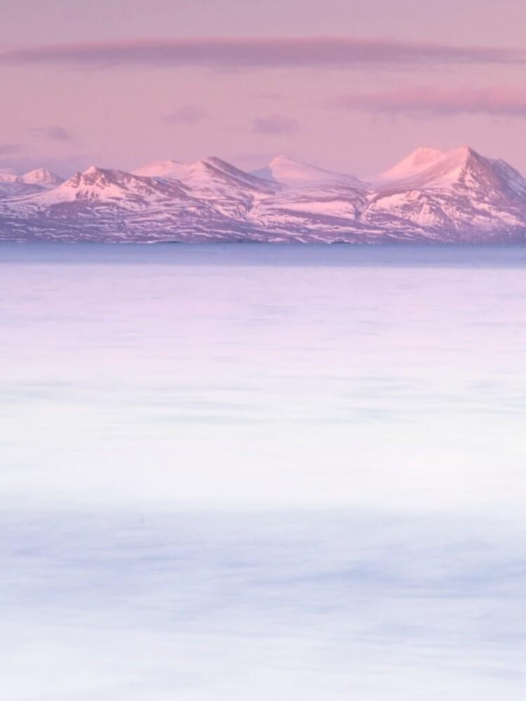 dusky pink by paulmcgreevy
