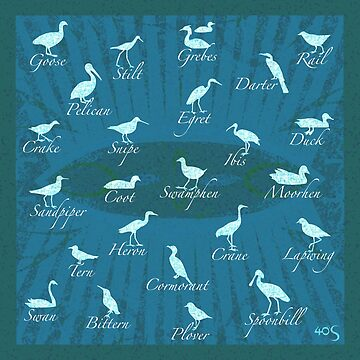 Shorebirds Silhouette - blue  by 40degreesSouth