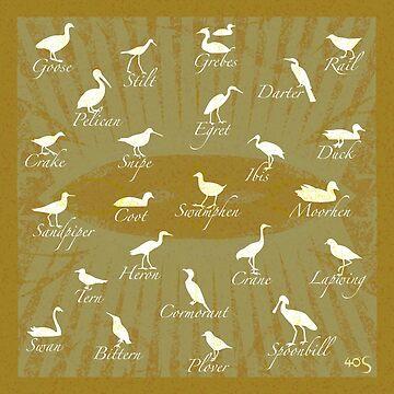 Shorebirds Silhouette - green by 40degreesSouth
