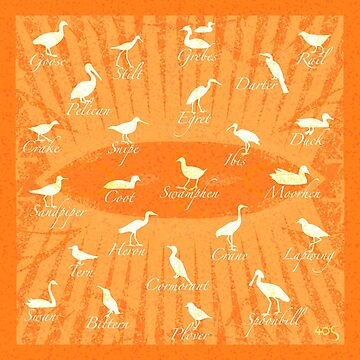 Shorebirds  Silhouette - orange by 40degreesSouth