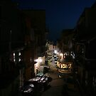 Streets of Manarola at night by Stephanie  Wiese