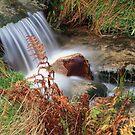 water  green and brown by Alexander Mcrobbie-Munro