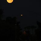 Early AM Moon 1/3 by down23
