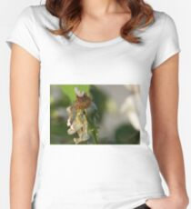 Faded Rose Women's Fitted Scoop T-Shirt