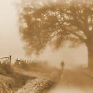 Morning Constitutional   [ aged version ] by relayer51