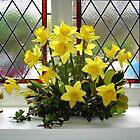 Easter Window by lezvee