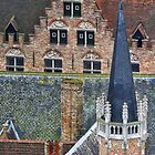 Bruges roofscape by Sue Purveur