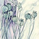 Poppies (watercolour on paper) by Lynne Henderson
