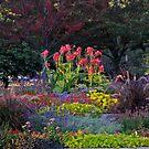 Flowers In the Garden by Linda Miller Gesualdo