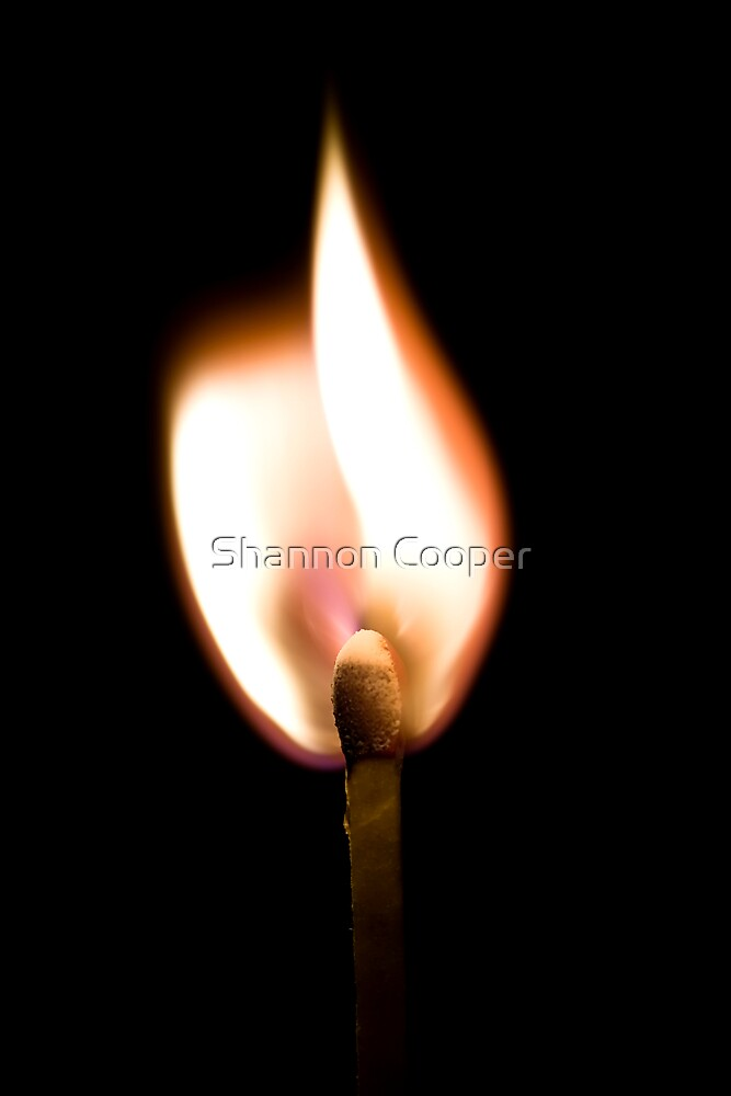 Flame by Shannon Beauford