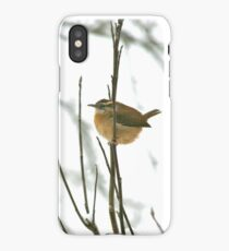 Sitting Wren iPhone Case/Skin