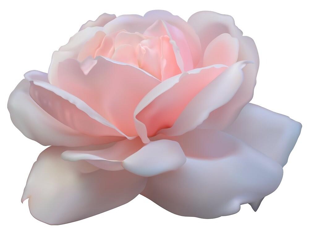 «Rosa» de xmandyycx3