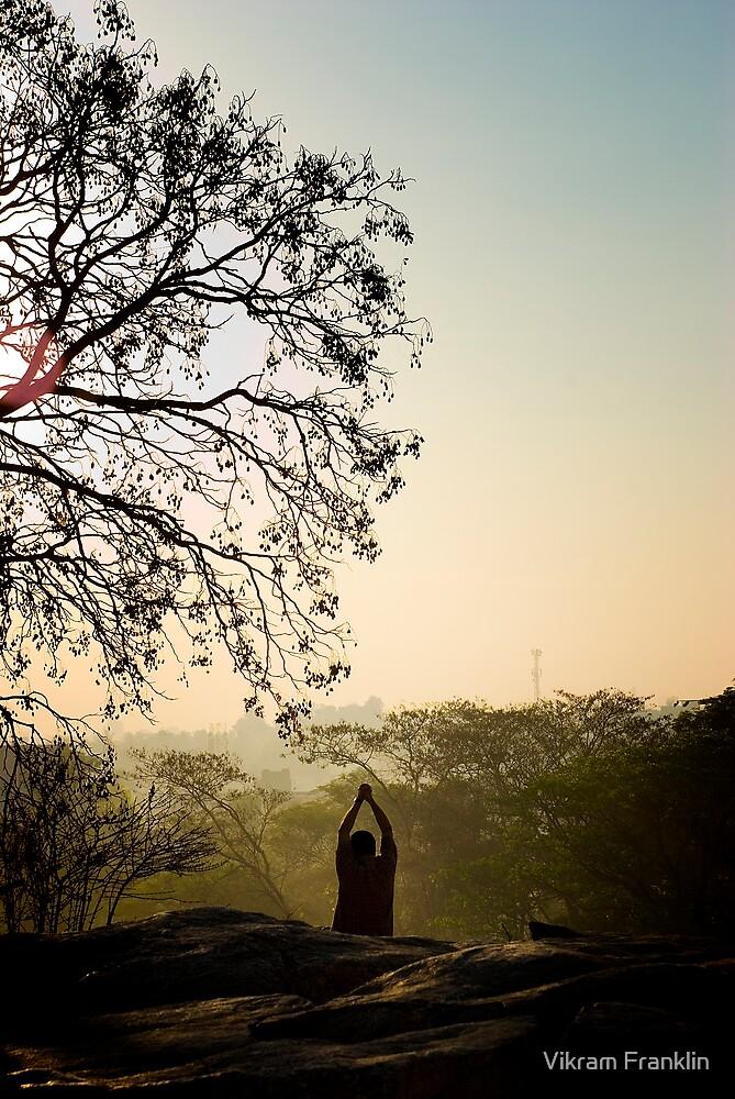 Seeking his center beneath the tree by Vikram Franklin