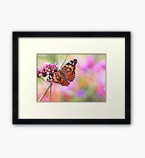 Spring butterfly trend design   Framed Print