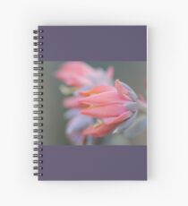 Echeveria runyonii 'Topsy Turvey' Flower Spiral Notebook
