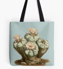Lophophora williamsii / Peyote - antique botanical illustration 1847  Tote Bag