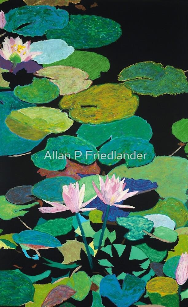 Blairs Magical Pond by Allan P Friedlander