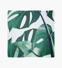 Monstera #redbubble #artprints Scarf