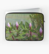 Protea Buds Laptop Sleeve