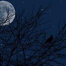 Night Hunter by Samantha Dean