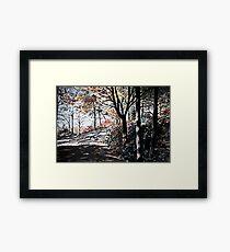 Bucks Pocket OverlookTrail Framed Print
