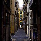 [P1200358 _Qtpfsgui _GIMP] by Juan Antonio Zamarripa [Esqueda]