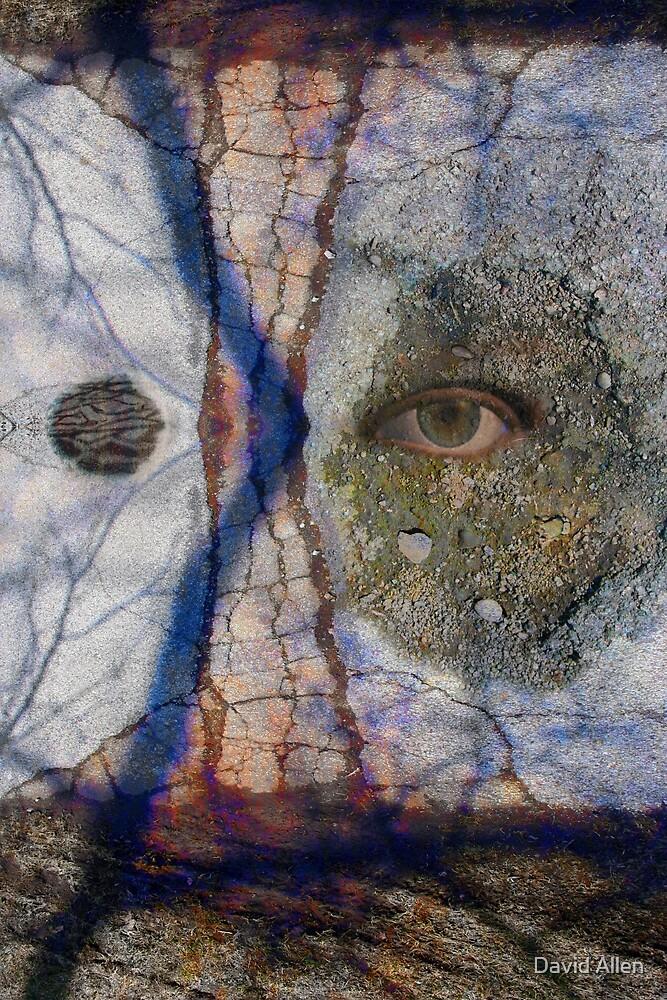 Emotional Disfiguration by DAViD M. ALLeN