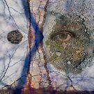 Emotional Disfiguration by DAViD ALLeN
