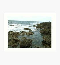 Giant's Causeway coast of Northern Ireland Art Print